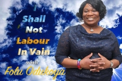 I Shall Not Labour in Vain